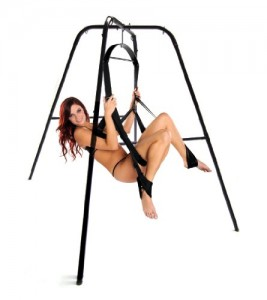 The Ultimate Sex Swing Stand review